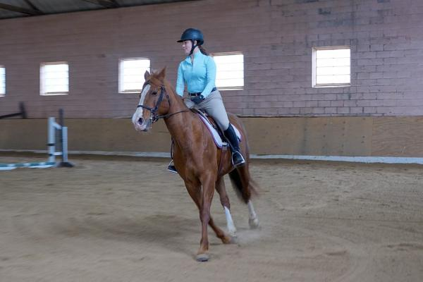 equestrian student in the indoor arena
